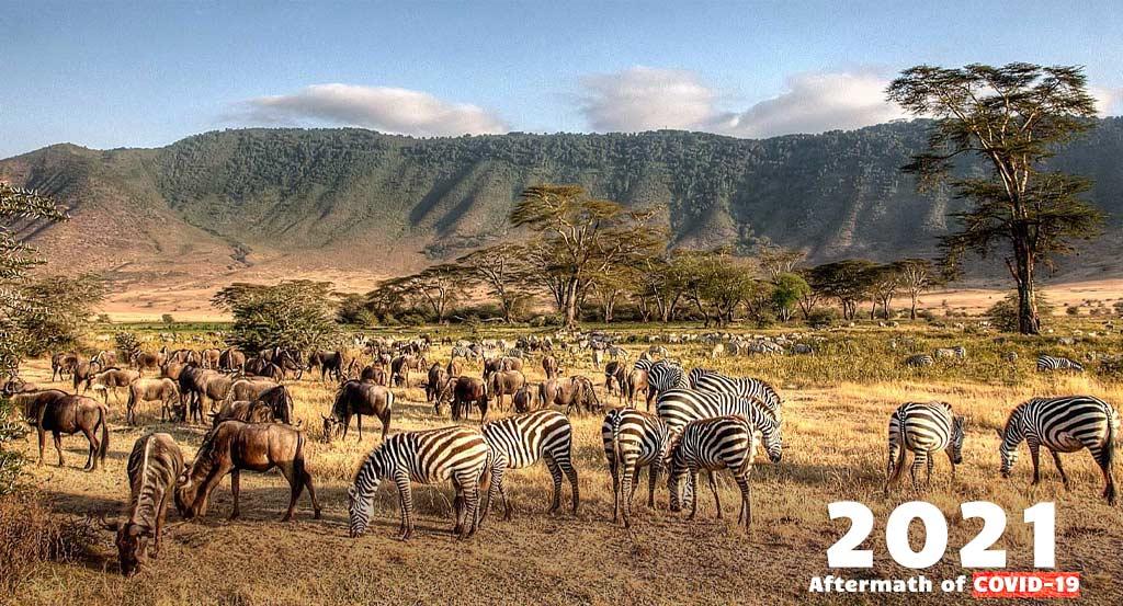 Tanzania Safaris - Tanzania Wildlife Safari